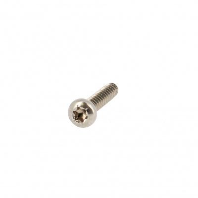Plaatschroef cilindrische bolkop breed Torx RVS A2 Din 7981X
